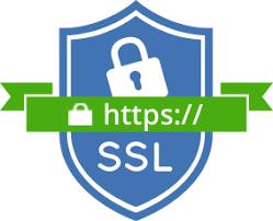 Duelz casino have an ssl certificate.