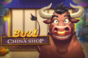 bull in a china store slot